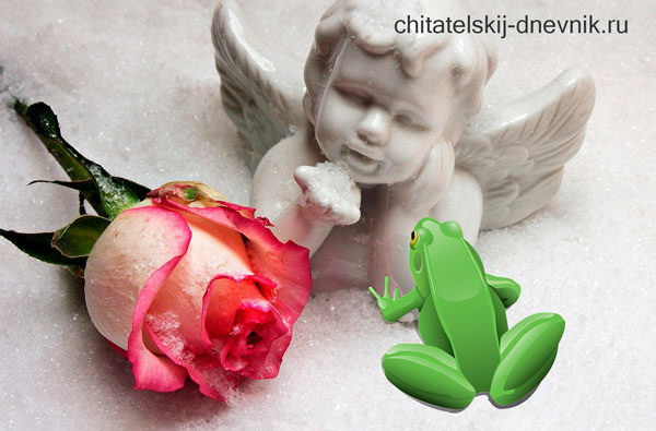В. гаршин сказка о розе жабе и розе читать краткое содержание